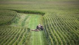 Las exportaciones agrícolas registran el segundo nivel más grande registrado en 2020