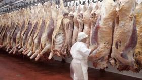 Cae la faena anual de bovinos