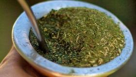 Un extracto soluble de yerba mate será utilizado en jugos naturales