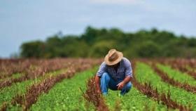 México alcanza superávit histórico en la balanza comercial del sector primario