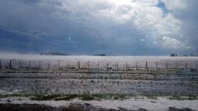 Con las lluvias llegó el alivio para el campo
