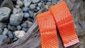 Estados Unidos: la venta de productos de mar creció notablemente en 2020