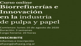 Curso online: Biorrefinerías e Innovación en la industria de pulpa y papel