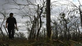 Se declaró la emergencia agropecuaria para Mendoza y Río Negro