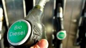 Bolivia apuesta al biodiesel para sustituir importaciones de combustible diesel