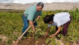 2 de julio: Día de la Agricultura Nacional