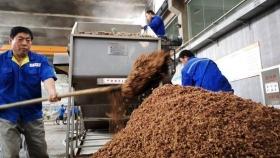 Los compradores asiáticos se cambian del maíz al trigo para alimentar pollos y cerdos