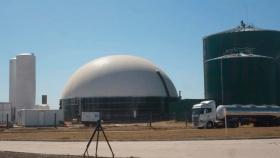 Por primera vez en cinco años, el bioetanol de maíz y el de caña tienen el mismo precio