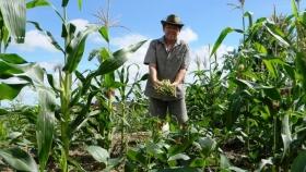 Canalizan fondos para la agricultura familiar