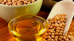 Argentina se convierte en el principal exportador de aceite de soja a nivel mundial