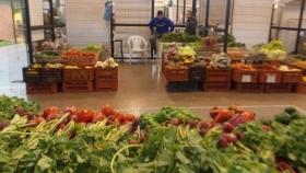 El Mercado Concentrador de Posadas equipa, asesora y acompaña a los productores