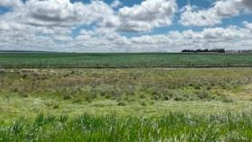 Aapresid se sumó al reclamo contra la toma de tierras: No hay sustentabilidad sin propiedad privada