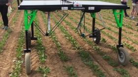 La era robótica: en la Argentina ya trabajan más de 1.000 robots agrícolas