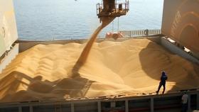 Liquidación de divisas: incógnita por la venta de granos