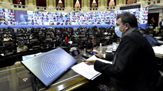 Sesión especial: la Cámara Baja finalmente tratará la Ley Ovina, el etiquetado frontal y el nuevo régimen previsional para viñateros
