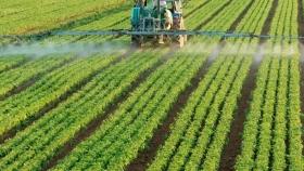 Entidades del agro rechazan la medida judicial que restringe el uso de agroquímicos