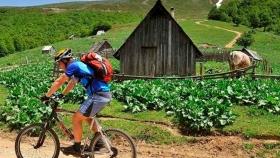 China toma medidas para ayudar a recuperación de turismo rural