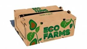 Oppy adquiere participación en Eco Farms y expande su categoría de paltas