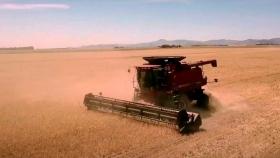 La cebada argentina se posiciona en el mercado mundial
