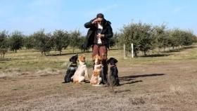 Trufas negras: se venden hasta en 4.000 euros
