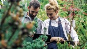 Los jardines, espacios cada vez más inteligentes