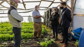 Agricultura en Tierra del Fuego para fortalecer el trabajo de pequeños y medianos productores