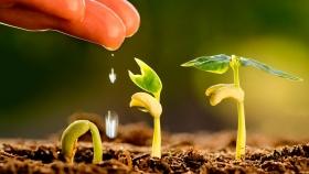 """El Banco Africano de Desarrollo respalda a los jóvenes """"agronegocios"""" para combatir el cambio climático"""