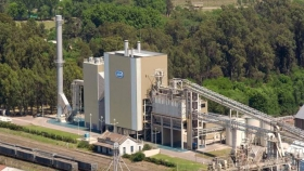 AGD exportó 20% más de derivados de soja y de girasol