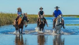 Turismo: Esteros del Iberá, Corrientes invita
