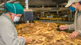 Tabaco: el sector recibió cerca de $100 millones