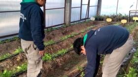 Escuela agrotécnica chubutense elegida para trabajar con Microsoft e INET