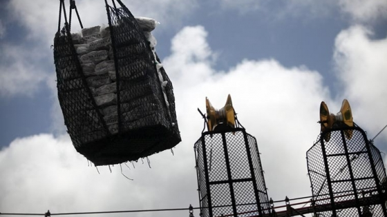 Calamar 2021: 70 barcos con capturas de 30 toneladas por día
