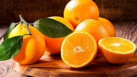 Fruta: Argentina tiene las naranjas más baratas del mundo, después de Egipto y Marruecos