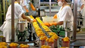 El BICE dará créditos para primera exportación y capital de trabajo a empresas alimenticias