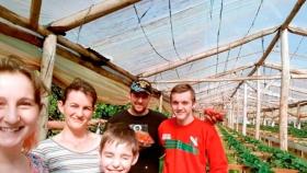 Buscaron asistencia en la web y mejoraron su cultivo de frutillas