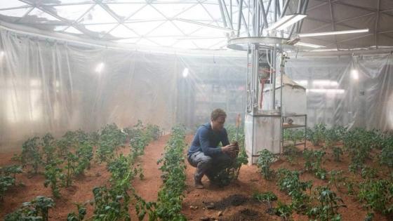 Suelo de la Luna y Marte se podría utilizar como tierra de cultivos