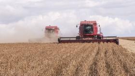 Francia se prepara para una caída abrupta en la siembra de primavera, liderada por la cebada