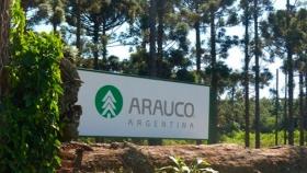 Pablo Ruival dirige Arauco, la mayor empresa forestal del país: Afirma que con retenciones y límites a la compra de tierras es difícil atraer capitales extranjeros hacia el sector