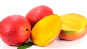 Presente y Futuro del Consumo de Mango en EE.UU