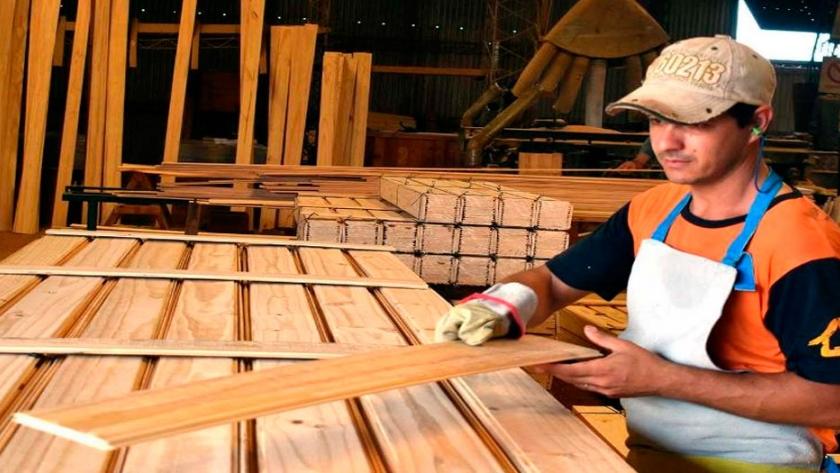 Salta impulsa un proyecto de Ley para incrementar el empleo en el sector maderero