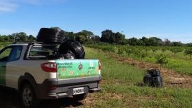 Riego, el nuevo plan que encara la Provincia para fortalecer las producciones de limón y nuez pecán