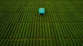 El futuro de la agricultura según Google