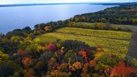 Finger Lakes, el nuevo destino de los amantes del vino