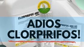 ¿Adiós al clorpirifos?