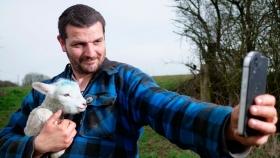 Una nueva tecnología que permite tener el ganado bien resguardado