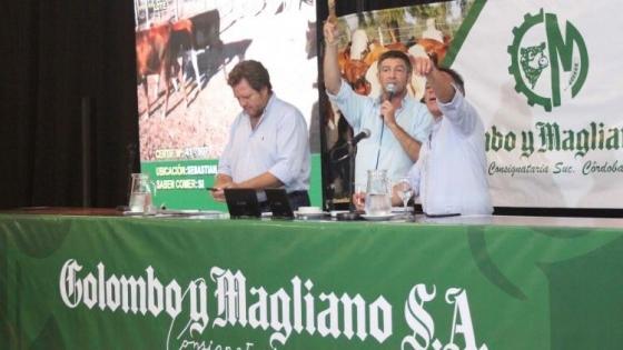 Santiago del Estero: Colombo y Magliano vende 11.500 cabezas
