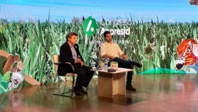 ¿Es posible restaurar el balance de Carbono del capital natural a través de sistemas de siembra directa en regiones tropicales y subtropicales?