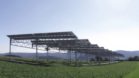 El fin de semana leyó: La flexibilidad de la energía solar puede ser una ventaja para la agricultura