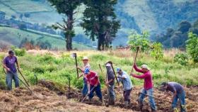 La biodiversidad en la agenda de FAO en latinoamérica