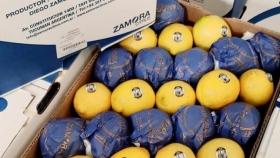De Tafí Viejo a Hong Kong: Una empresa tucumana logró exportar sus primeros limones a China